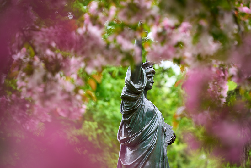 Lady Liberty and Cherry Blossoms