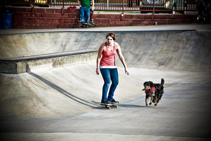 Skate-8664