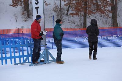 Skijoring: 2013-02-03