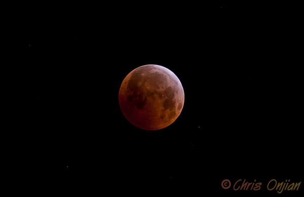 Lunar Eclipse December 2010