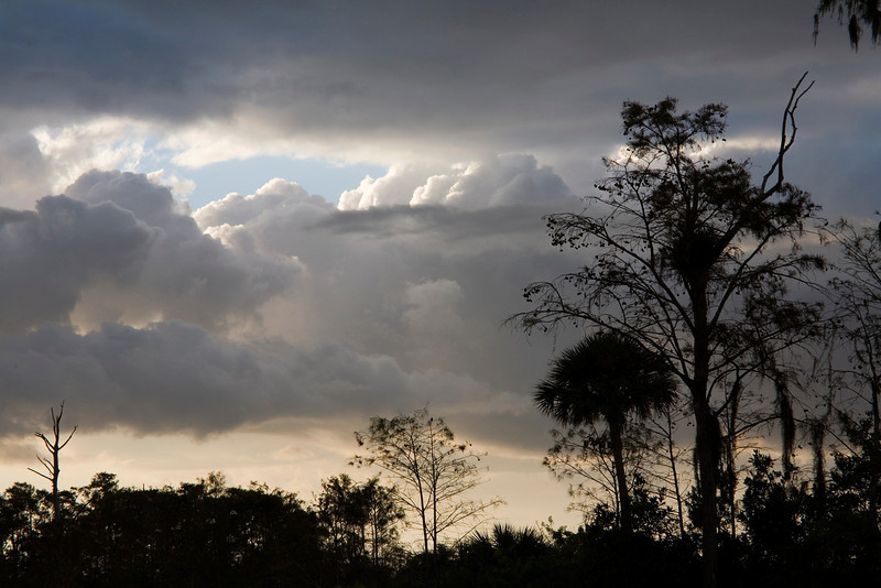 Tamiami Tail-a cloudy day offers some late day drama