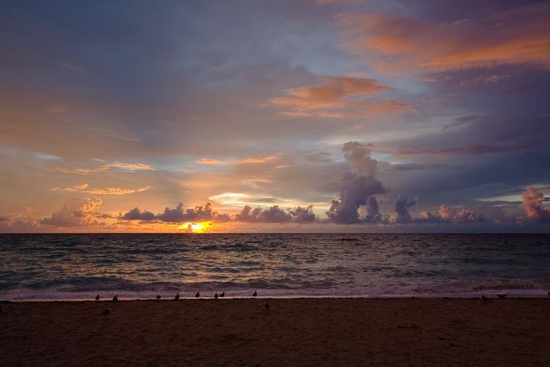 Seagulls watch the sun poke through the clouds