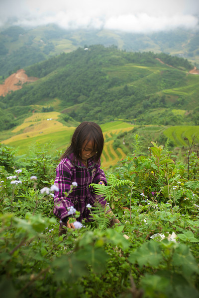 No one seems to worry that this little Black H'mong girl is picking flowers on the edge of a cliff