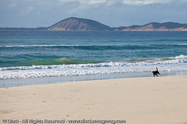 Rainbow Beach, Queensland, Australia; June 2010