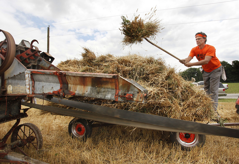 "By Alex Turco/Journal & Courier-- Randy Klutzke, of Scottsdale, AZ, tosses bundles of wheat into a 1930s vintage thresher at Wheatstock VII, on July 3, 2009, in Tippecanoe County, a wheat harvest and Allis-Chalmers farm equipment show put on by his father, Marion Klutzke, who collects and restores farm machinery produced over the last century. The show draws people from across Indiana, including those who spent their lives farming on Allis-Chalmers equipment. Harold Carithers, a now retired farmer from Newcastle, said, ""I grew up with Allis-Chalmers, I went to service, I came back and worked for Allis-Chalmers, and then I farmed with Allis-Chalmers."""