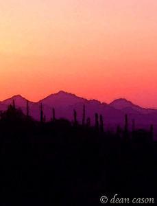 Saguaro National Park, West, Tucson, AZ