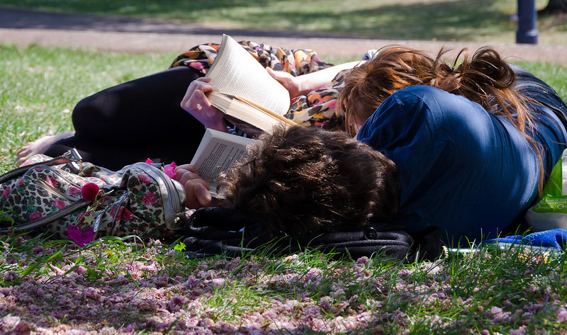 reading together in the park