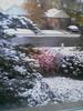 Toronto winter