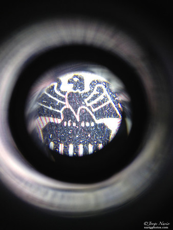 <h2>Microscope Series - What is it? ( leave comments or email for answer)