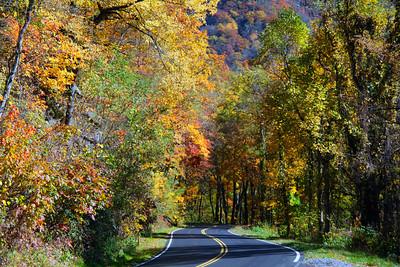 Smokey Mountain Colors