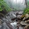Foggy Alum Cave Trail