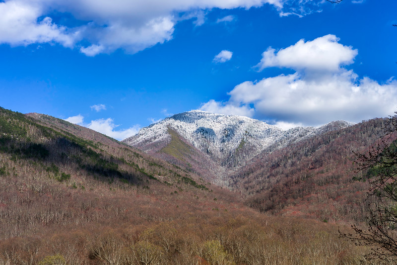 Mt. LeConte- Great Smoky Mountains National Park