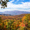 Roaring Fork - The Great Smoky Mountains National Park