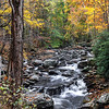 Tremont - Great Smoky Mountains National Park