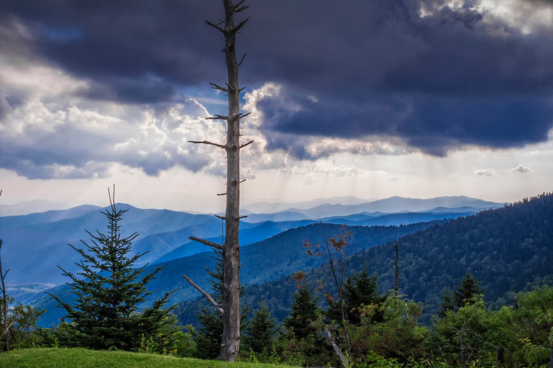 Clingman's Dome -  The Great Smoky Mountains National Park