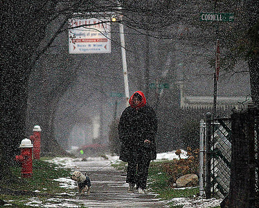 12/12/2010  Rita Ladd walkes her Yorkapoo Sampson on Prospect St in Elyria as the snow begins to fall in the early afternoon. Photo by Tom Mahl