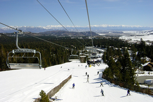 Chair 15 - view (back)
