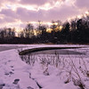 Hemlock Park<br /> Ottawa County, MI