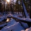 Downed trees<br /> Ottawa County, MI