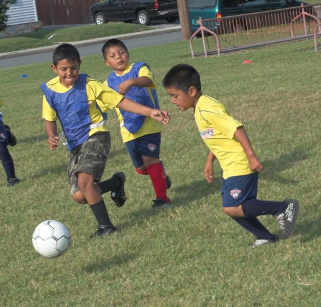 SoccerScoutsJul09_0021