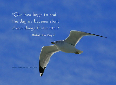 Our lives begin to end - - ,