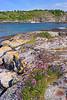 DSC_2149  HEGGØY, ØYGARDEN KOMMUNE, HORDALAND