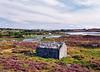 Torvhus ved Tjeldstømarken - Øygarden