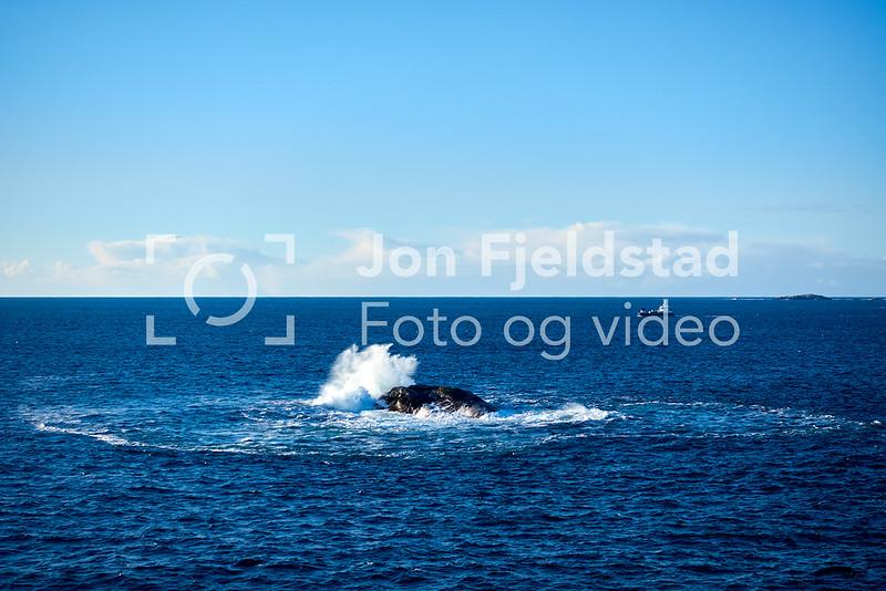 SKRÅPENVEDSTORSKORA-ØYGARDEN