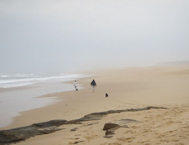 I could happily come back to South Africa and circumambulate her beaches. Truly awesome.