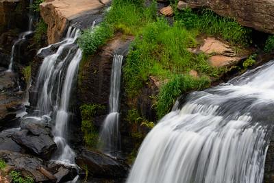 Reedy Falls, Charleston, SC