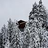 First Snow South Lake Tahoe 110