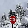 First Snow South Lake Tahoe 111