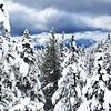 First Snow South Lake Tahoe 112
