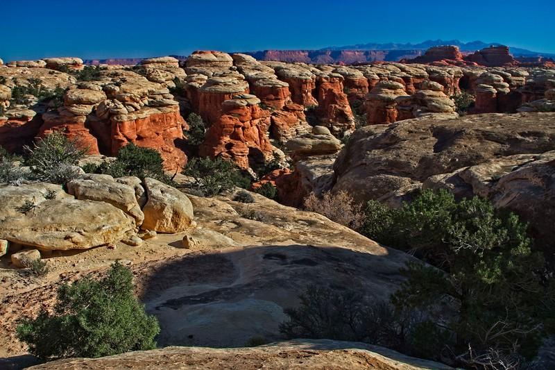 At caprock level in the Needles area of Canyonlands.<br /> Photo © Carl Clark