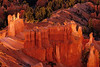 Delicious glowing colors at Bryce Canyon.<br /> Photo © Cindy Clark