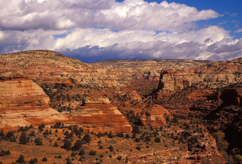 Love the name as well as the magnificent vistas it offers - Escalante!!<br /> Photo © Cindy Clark