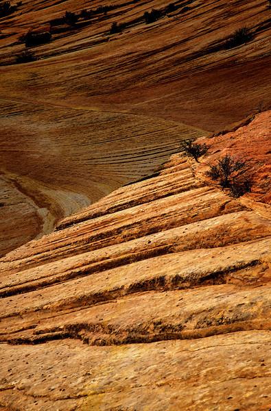 Zion zip line.<br /> Photo © Cindy Clark