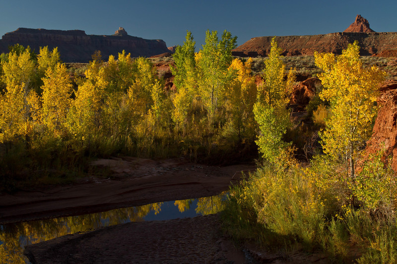 Early morning on Indian Creek on the way into Canyonlands Needle District.<br /> Photo © Cindy Clark