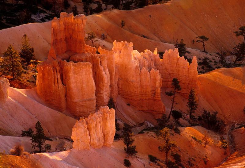 Sunrise glow at Bryce Canyon.<br /> Photo © Cindy Clark