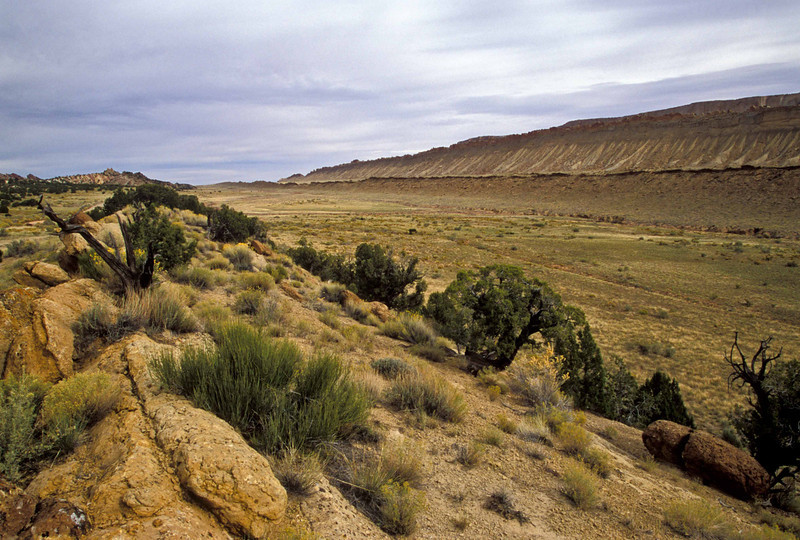 Large depression in Waterpocket Fold - Capitol Reef.<br /> Photo © Carl Clark
