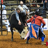 Bullfighter Bryan McElwee South region finals Nov 1, 2013