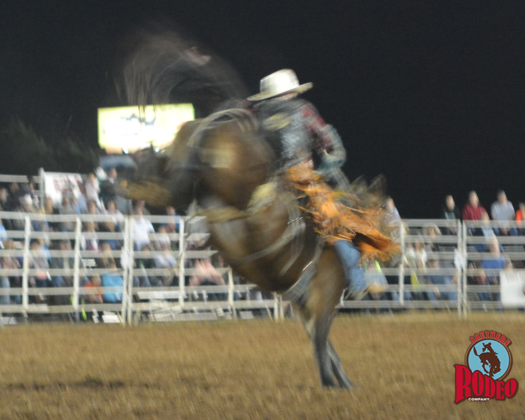 Eddie Parlier takes on Remember at Jasper Bulls and Broncs Oct 12, 2013