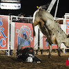 Tyler Collver takes on Halileuja at Jasper Bulls and Broncs Oct 12, 2013.