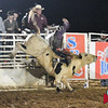 Payton Brooks takes on Highway Run in Jasper Bulls and Broncs rodeo Oct 12, 2013.