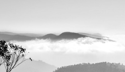 Bullio Fog