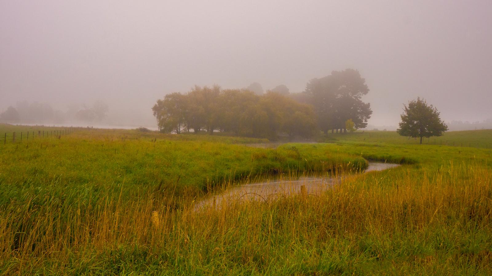 Fog in the Dale