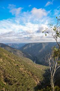 Badgery's Creek Lookout