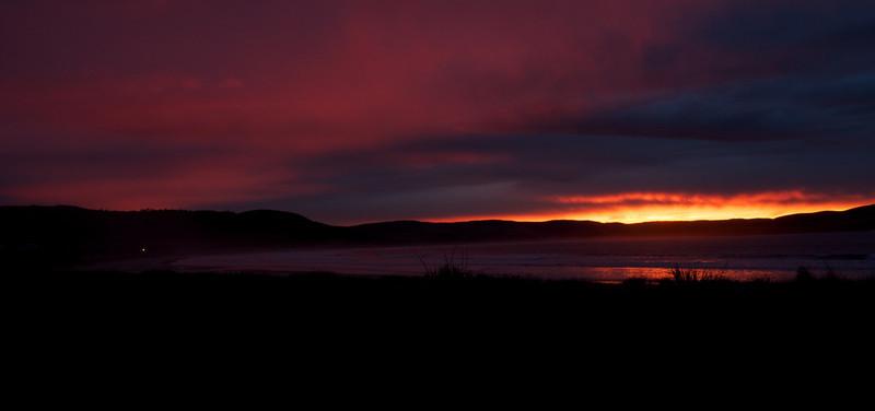 Curio Bay dawn