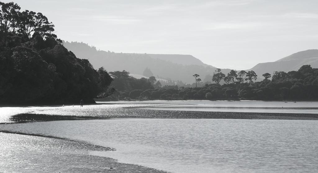 Papatowai Estuary, Catlins