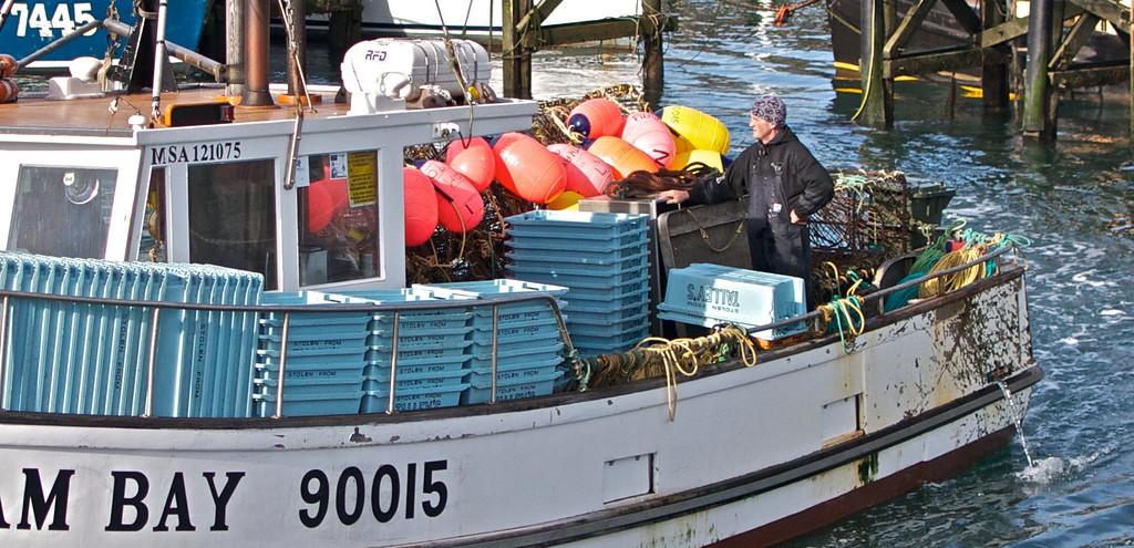 Returning fisherman at Bluff